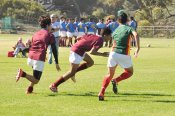 U16 Rugby WHS vs Camps Bay